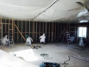 Mold Removal Team In A Commercial Property